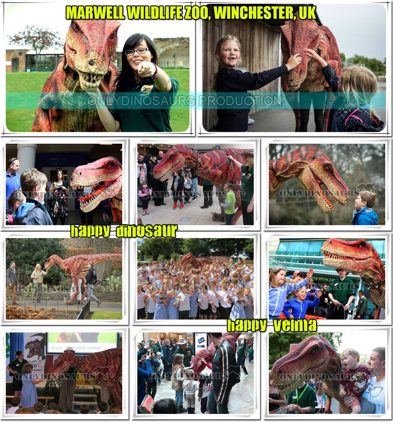 Marwell Dinosaurs Alive