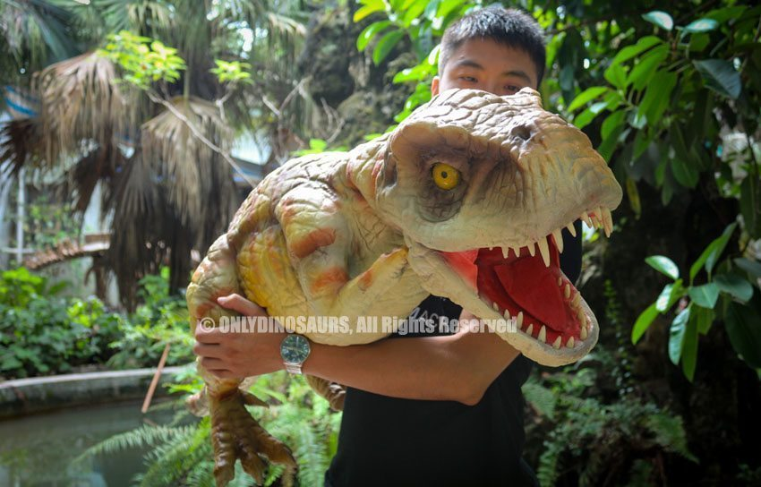 Realistic T-Rex Baby Hand Puppet