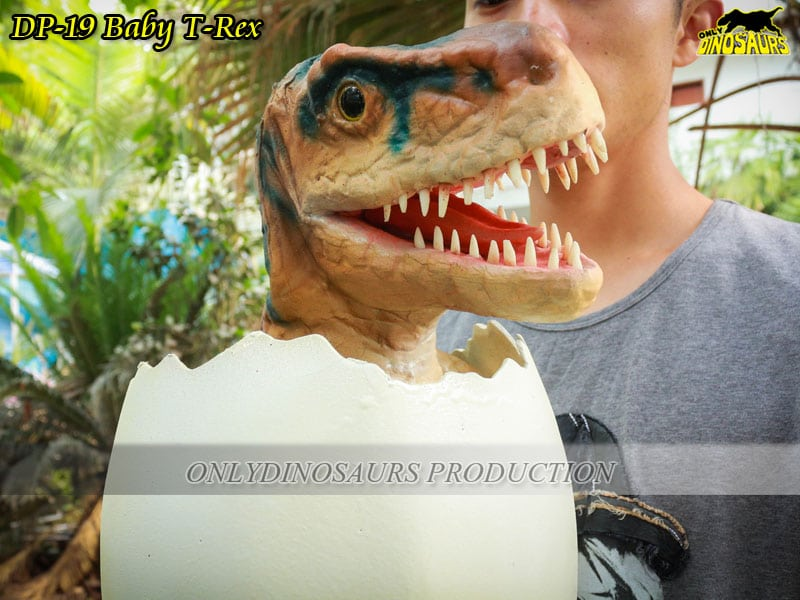 Lifelike Baby T-Rex opens his mouth and roars.