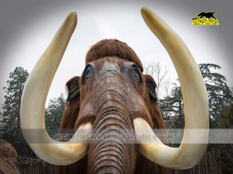 Ice Age Mammoth 1