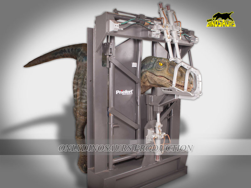 Velociraptor Suit is put into a Cage