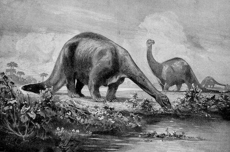 old-dinosaurs