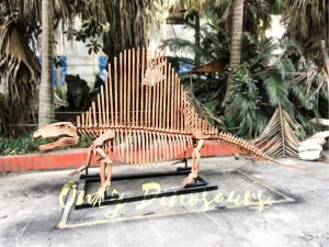 2 Meters Full Dinosaur Fossil Dimetrodon Skeleton for Exhibition