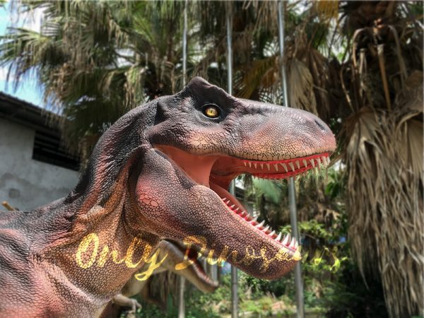 Adult Dinosaur Costume T Rex Costume5 1
