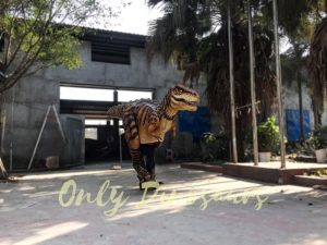 Adult Jurassic World T Rex Costume for Wow Party