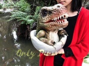 Baby Hatching T-Rex Puppet Kids Gift