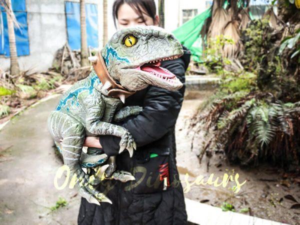 Baby Velociraptor Dinosaur Puppet for Kids4 1