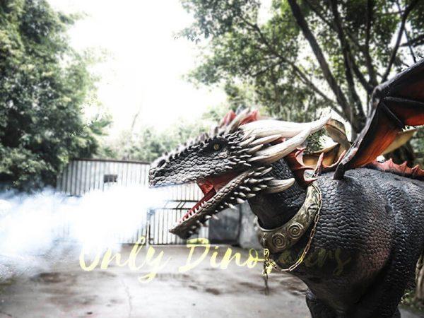Black Realistic Halloween Dragon Costume4 1