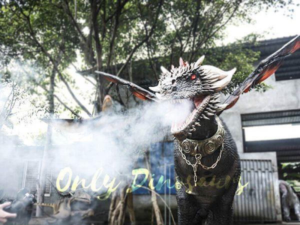 Black Realistic Halloween Dragon Costume5 1