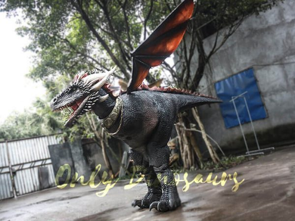 Black Realistic Halloween Dragon Costume8 1