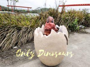 Customized Baby Dinosaur Turtle Hand Puppet