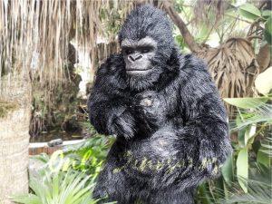 Exhibition Props Realistic Gorilla Costume