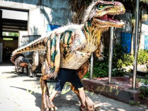 Fairy T rex Costumes for Festival