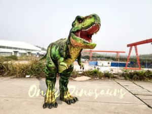 Giant T-Rex Costume 6M Long 3M High