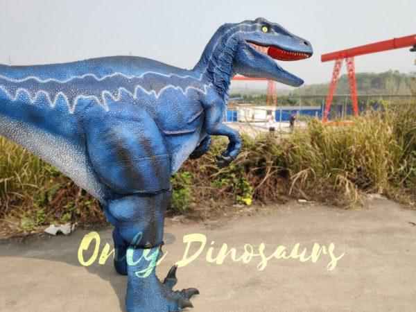 Jurassic-Park-Velociraptor-Blue-Costume-In-Reality111