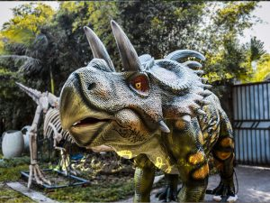 Life Size Artificial Dinosaur Animatronic Albertaceratops