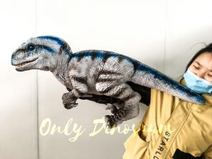 Lifelike Baby Velociraptor Puppet with Gloved Hand