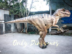 Lifelike T-rex Costume for Park