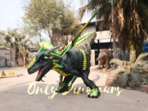 Professional Dragon Costume for TV Show