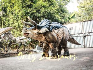 Realistic Four Legged Triceratops Costume for Two Actors