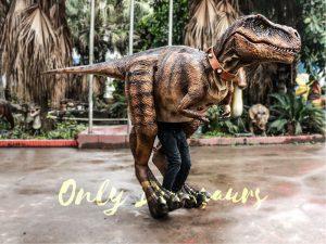 Tyrannosaurus Rex Costume Visible Legs