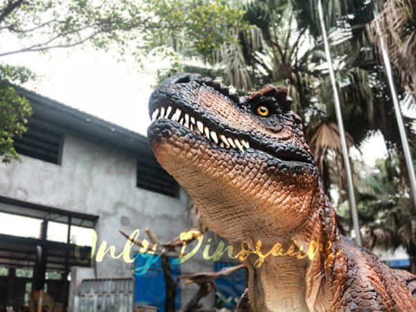Trex Costume Jurassic Park Dinosaur1 1