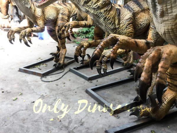 Agminate Utahraptor Animatronic Dinosaur Show Props6