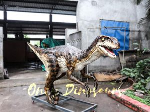 Animatronic Dinosaur Raptor for Dinosaur Park