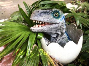 Baby Blue Velociraptor Newborn in Eggshell