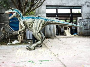 Blue Raptor Costumes with Fine Details