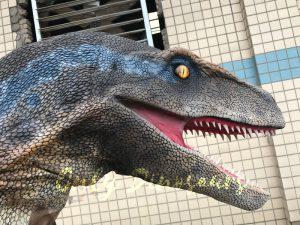 Cheap Dinosaur Costume Standing Raptor