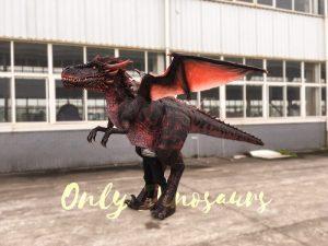 Halloween Dragon Costume Visible Legs