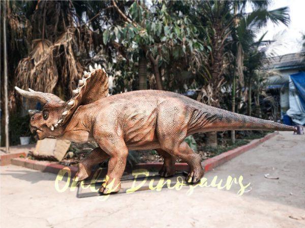 High Quality Animatronic Triceratops Robot Dinosaur5