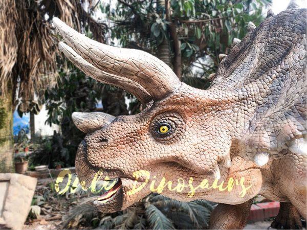 High Quality Animatronic Triceratops Robot Dinosaur6