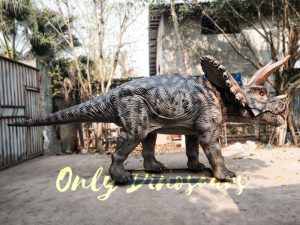 Jurassic Adventure Park Animatronic Triceratops