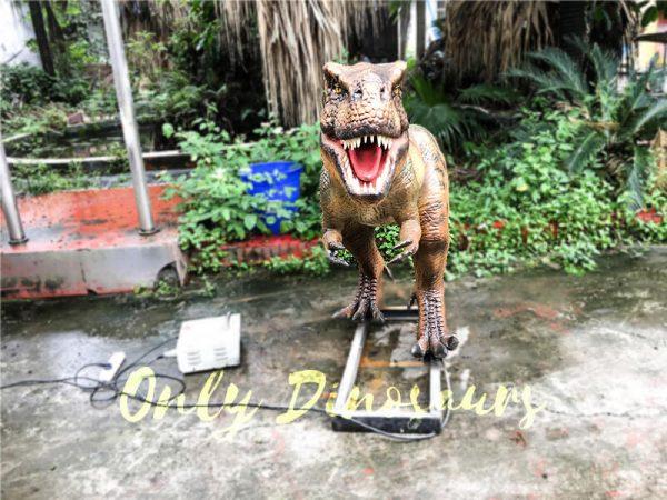Jurassic Park T rex Animatronic Prop for Vistitor2