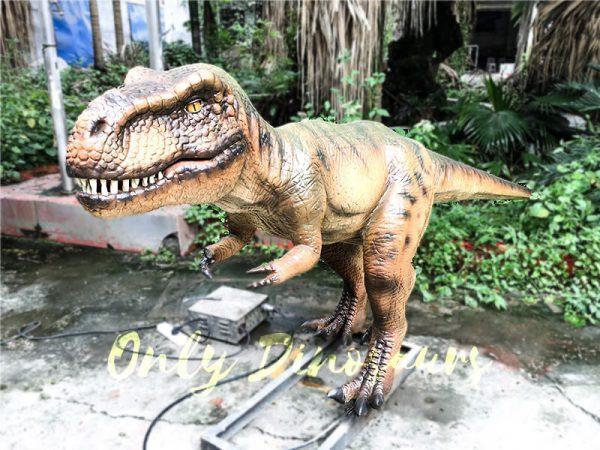 Jurassic Park T rex Animatronic Prop for Vistitor3