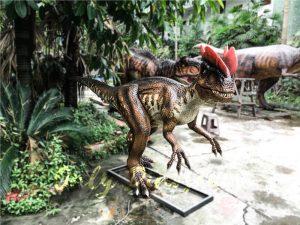 Life size Animatronic Dinosaur Dilophosaurus