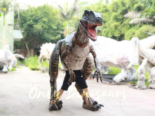 Realistic-Animatronic-Dinosaur-Costume-of-Raptor6