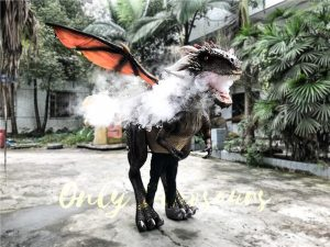 Shop Center Dragon Costume with Spraying Black