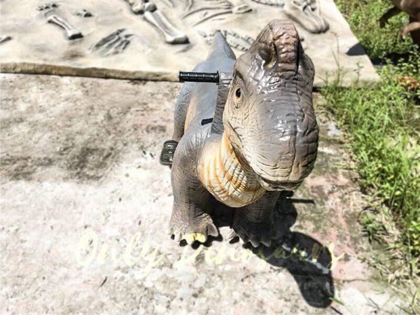 Theme Park Brachiosaurus Dinosaur you can Ride4