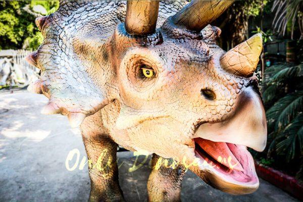 Vivid Exhibit Dinosaur Animatronics Triceratops5