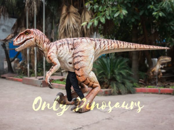 Walking-Dinosaurs-Raptor-Costume-Visible-Legs3-1