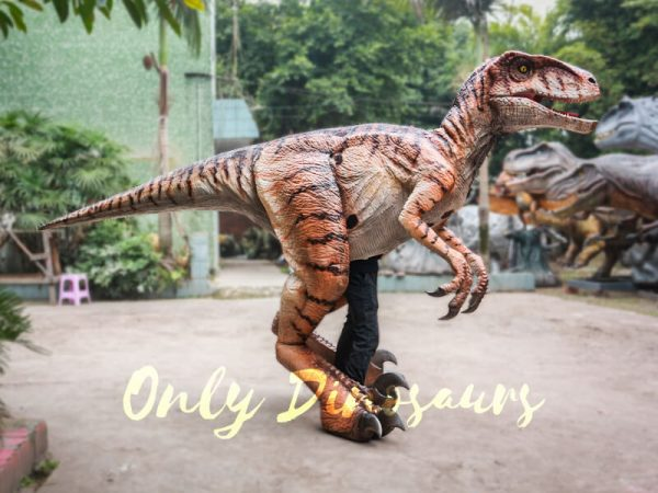 Walking-Dinosaurs-Raptor-Costume-Visible-Legs4-1