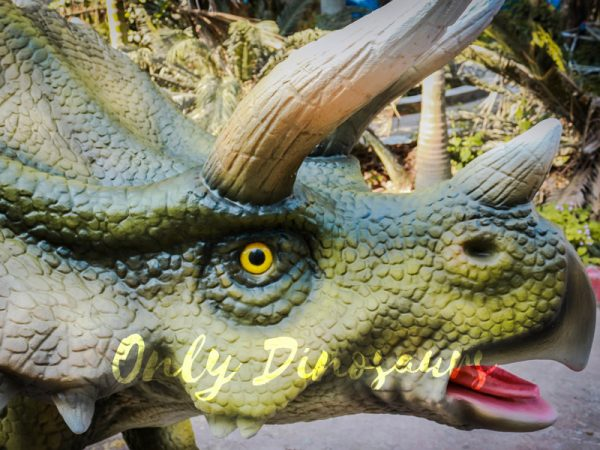 Animatronic-Dinosaur-Show-Lifelike-Triceratops1-1