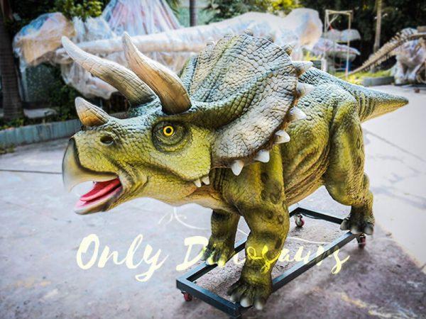 Animatronic Dinosaur Show Lifelike Triceratops2