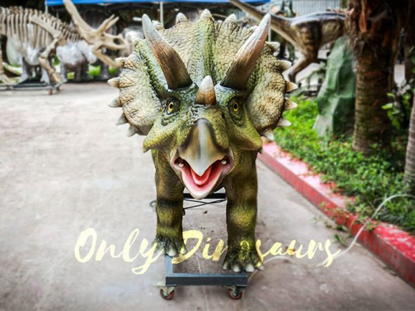 Animatronic Dinosaur Show Lifelike Triceratops3