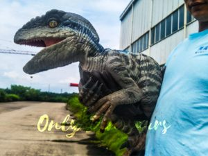 Baby Raptor Realistic Puppets for sale