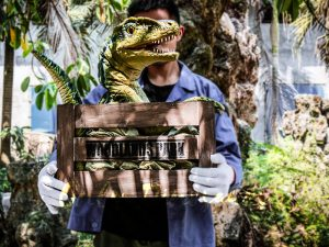 Baby Velociraptor Crate Puppet Cute For Kids