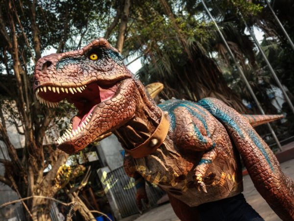 Buy-T-Rex-Costume-For-Sightseeing-Attraction111